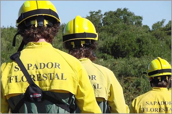 Bombeiros Sapadores Florestais - Capeia Arraiana