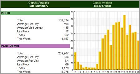 Estatisticas auditadas peloSitemeter
