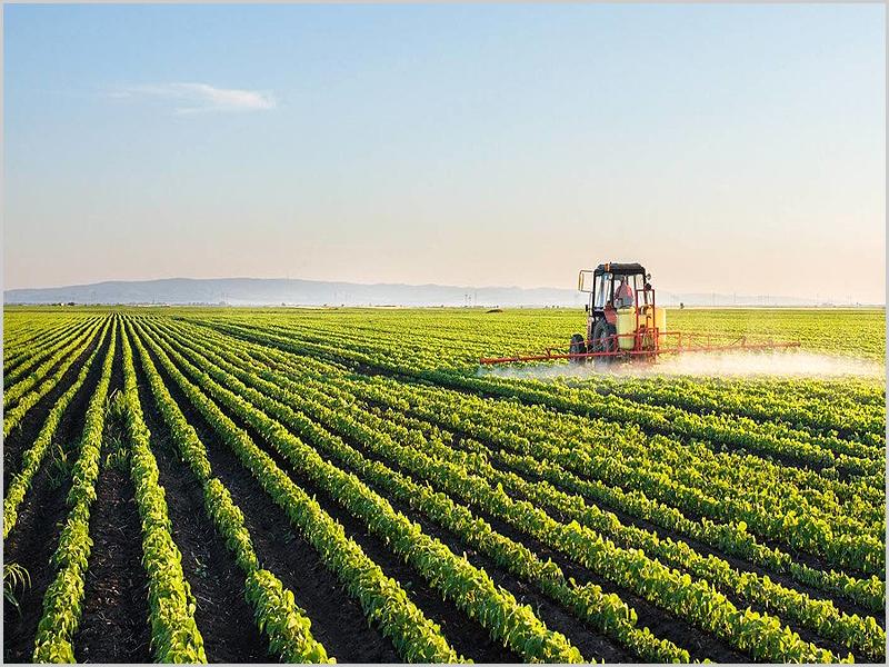 Agricultura em grande escala