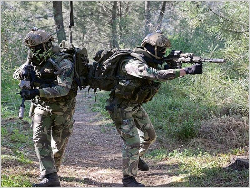 Exercício da Brigada de Reacção Rápida do Exército Português