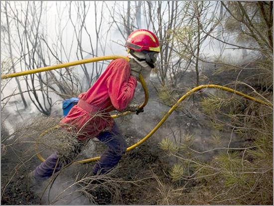 Fogo florestal - Bombeiros - Capeia Arraiana