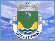 Brasão Freguesia Vale de Espinho - Sabugal - Capeia Arraiana