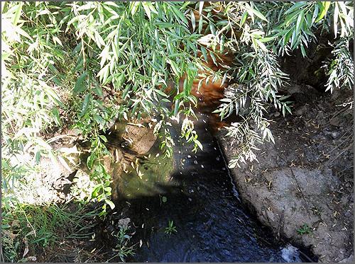 Poluição no rio Diz