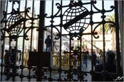 Praça Gomes Teixeira (Praça dos Leões) - Porto - Capeia Arraiana