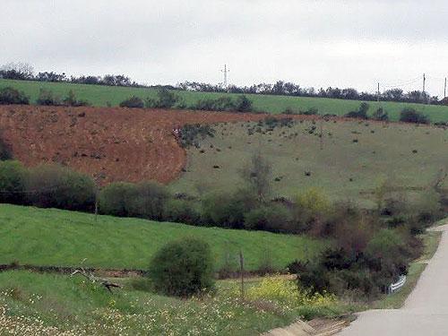 Terra decruada (ao fundo à esquerda)