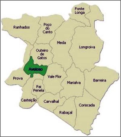 Localização de Aveloso no Municipio da Meda