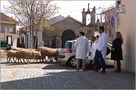 Médicos - Casteleiro - Capeia Arraiana