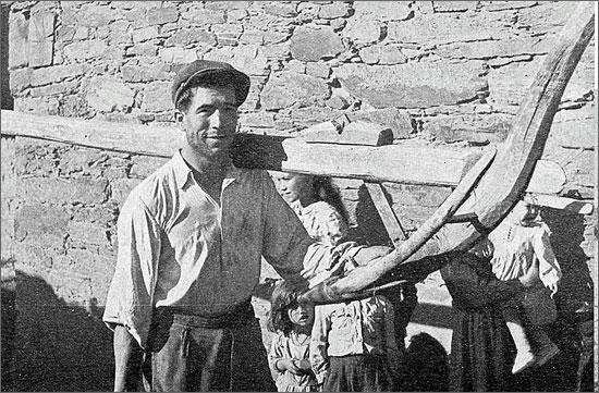 Um homem transportando o arado - foto disponibilizada por José Corceiro