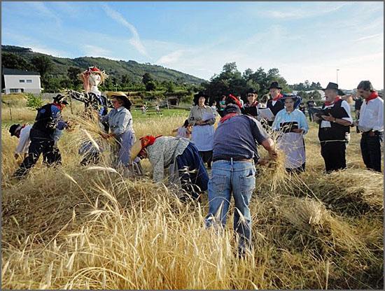 Recriação da ceifa do pão em Aldeia de Joanes (Fundão)