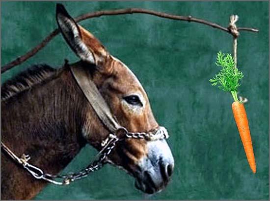 É a cenoura... Até porque para o ano há eleições...