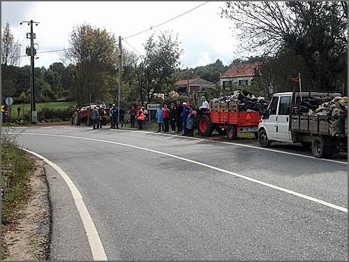 Rendo mobilizou-se para limpar a floresta