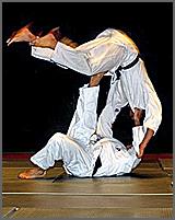 Demonstração de judo