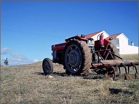 Não houve suficientes apoios para a actividade agrícola