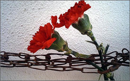 Temos de combater os que oprimem a nossa Liberdade