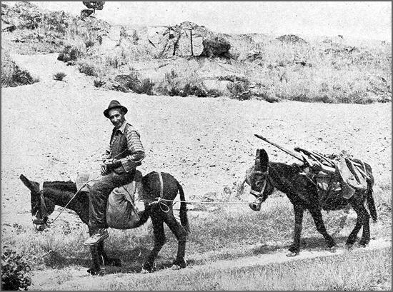 O homem e os burros (Foto de José M. Corceiro)