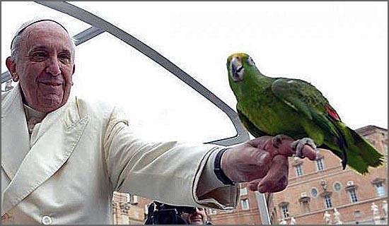 O Papa Francisco está preocupado com a Natureza