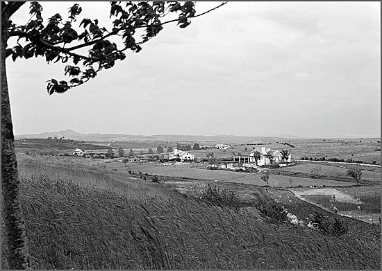 A Colónia Agrícola Martim Rei na altura em que foi implementada