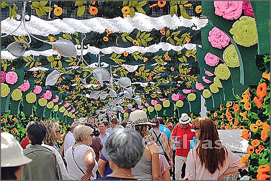 Festas das Flores de Campo Maior