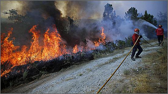 A catástrofe tem-se abatido sobre o concelho do Sabugal