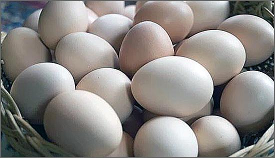 Há 100 anos os açambarcamentos tiraram os ovos do mercado
