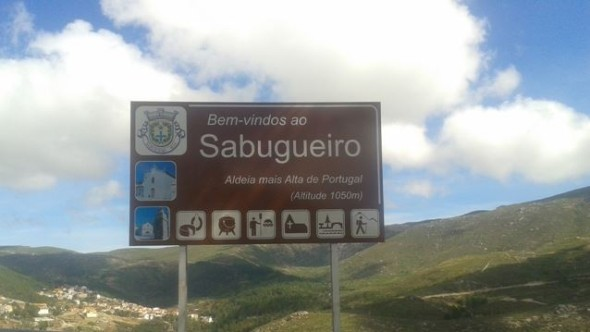 Sabugueiro na Serra da Estrela - capeiaarraiana.pt