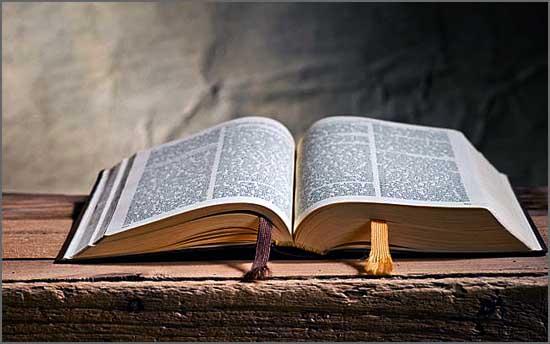 Veiga Cardoso julga conhecer a Bíblia