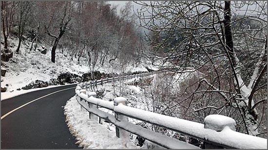 A neve e a geada branqueiam e imaculam