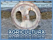 Agricultura - Orelha - Capeia Arraiana