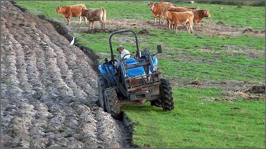 A agricultura tem futuro no concelho do Sabugal
