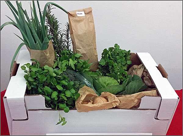 Encomenda de produtos agro-alimentares