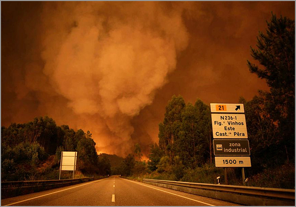 Incêndios Florestais - Ramiro Matos - Capeia Arraiana