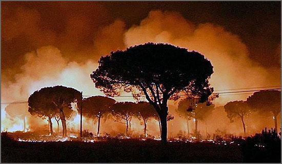 Esta imagem é de um incêndio enorme no Sul da Espanha