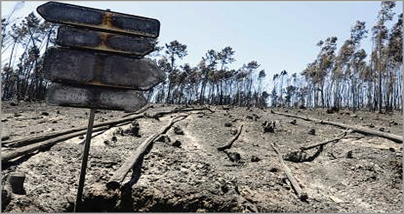 Tragédia dos incêndios nas Televisões - José Carlos Mendes - Capeia Arraiana