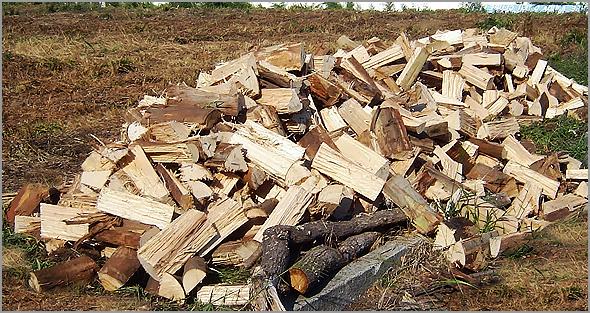 A lenha é fundamental para atenuar o frio dos rigorosos Invernos na Beira Alta - Capeia Arraiana