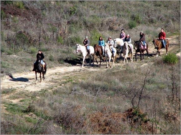 A Associação promove passeios a cavalo e outras actividades