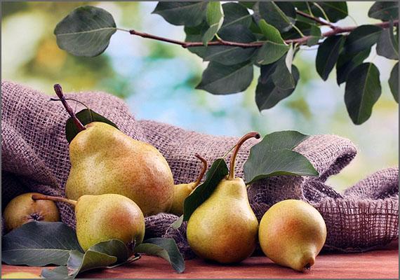 A pera portuguesa tem imensas variedades