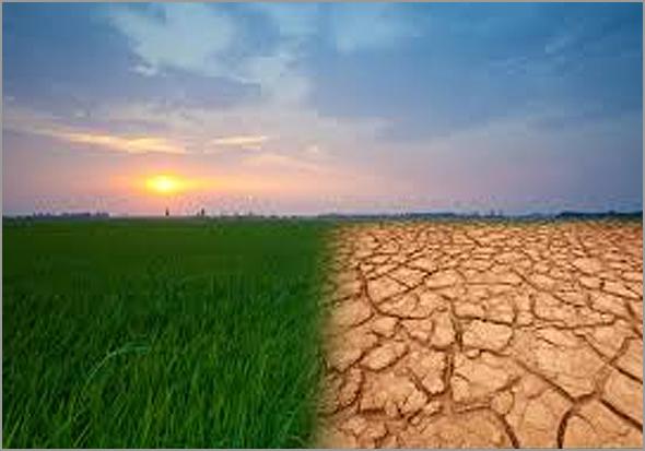 Há mesmo alteração climática - capeiaarraiana.pt
