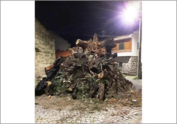 O madeiro sempre ardeu na Praça: este ano também... (Foto: 'Viver Casteleiro') - Capeia Arraiana