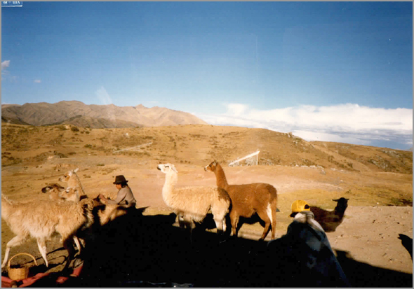 Franklim em  Machu Pichu