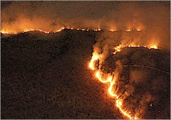 Amazónia em fogo: perigo mundial - 1 milhão de hectares ardidos