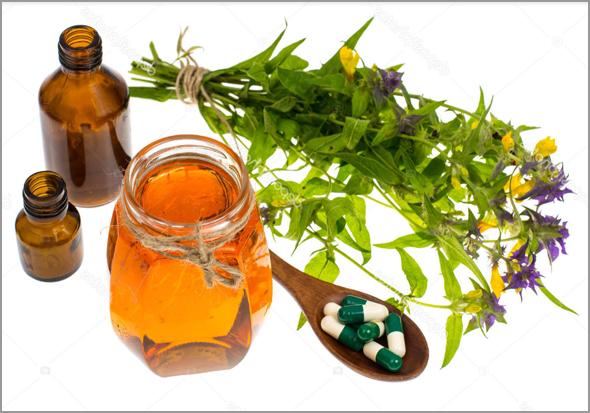 Ervas medicinais são partes de plantas extraídas ou preparadas para benefícios da saúde