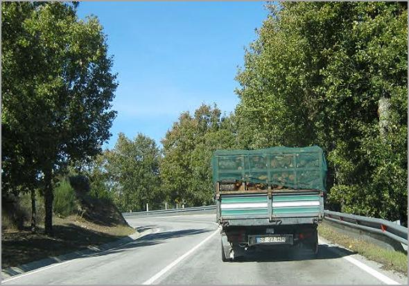 Estrada Nacional 233 (sem condições de segurança rodoviária) liga duas sedes de concelho, o Sabugal e a Guarda