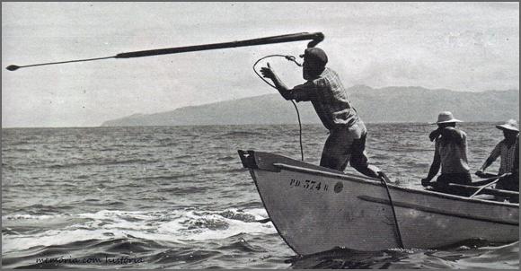 Caça às baleias nos Açores
