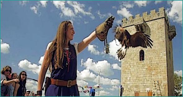 Falcoaria em Pinhel para atrair mais turismo