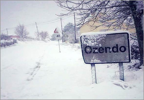 OZENDO (Foto: ARCO-Associação do Ozendo)