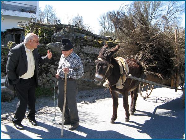 Companhia de muitos idosos nas aldeias