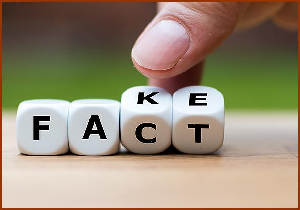 Factos e Boatos (Fake News)