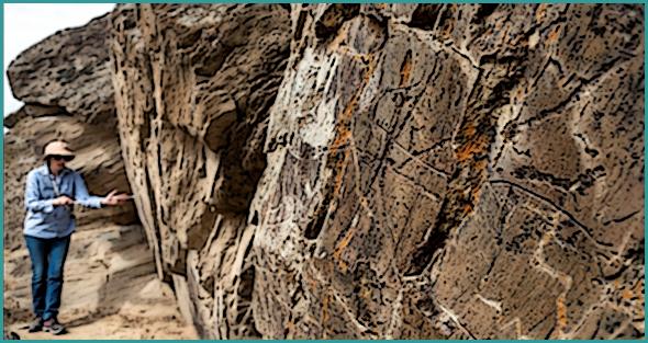 Gravura descoberta em Foz Côa pode ter cerca de 2,5 milhões de anos