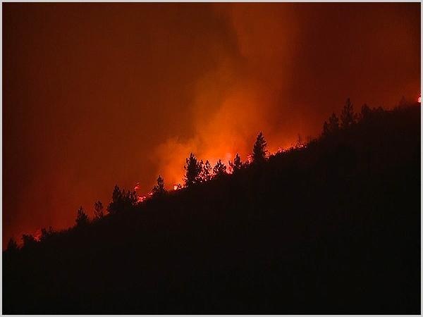 Incêndio em Aljezur (Foto: «Correio da Manhã»)