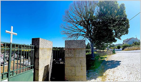 """Árvore com um """"Lado Morte"""" e um """"Lado Vida"""": seca e sem folhagem no lado que dá para o interior do cemitério e mantém-se viva e folhosa no lado que dá para o exterior (Nave - Sabugal)"""